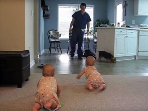 双子の赤ちゃんが、ハイハイしてパパをお出迎え