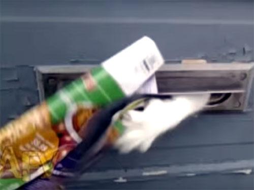 妖怪ポスト? 郵便受けで待ち受ける猫の魔手!