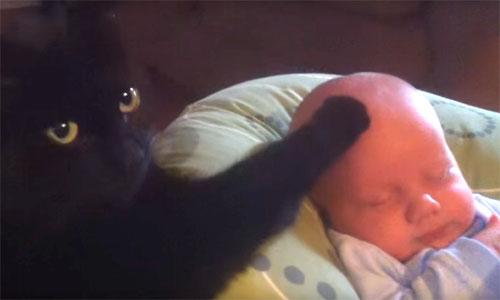 子守上手な黒猫♪ あら不思議、ピタッと泣き止む赤ちゃん