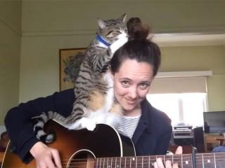 「かまって~」とギター演奏の邪魔をする猫。でも、可愛いので許しちゃいます♪
