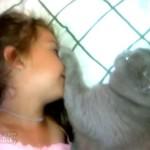 「息しちゃダメにゃ!」猫と少女の静かな戦い!