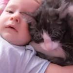 赤ちゃんをあやす猫「一緒にいてあげるにゃ♪」