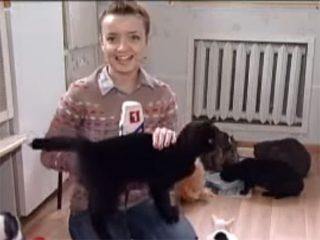 人懐っこ過ぎる黒猫に、笑いをこらえる女性レポーターがNG連発!可愛い放送事故♪