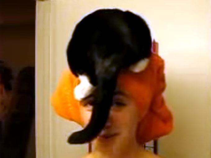 飼い主の頭に乗る猫