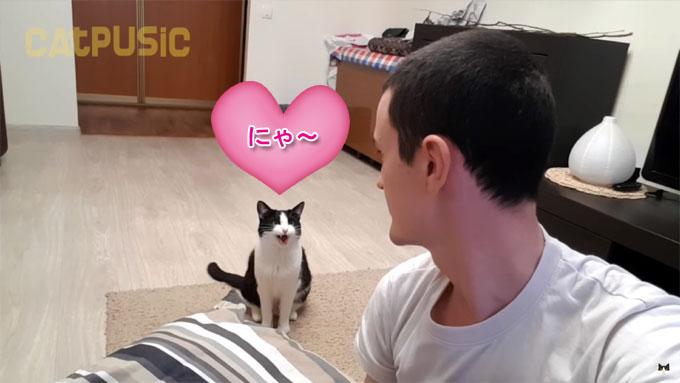 飼い主とアイコンタクトをして鳴く猫