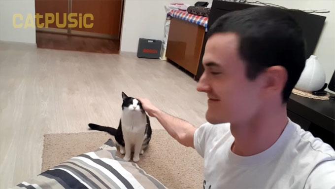猫を撫でる飼い主