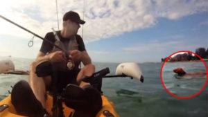 海をさまよって泳ぐ犬を、釣り人が救助! 悲しくも感動的な動画