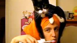 猫が飼い主さんの頭にジャンプ! 「歯磨き中も一緒にいたいにゃ!」